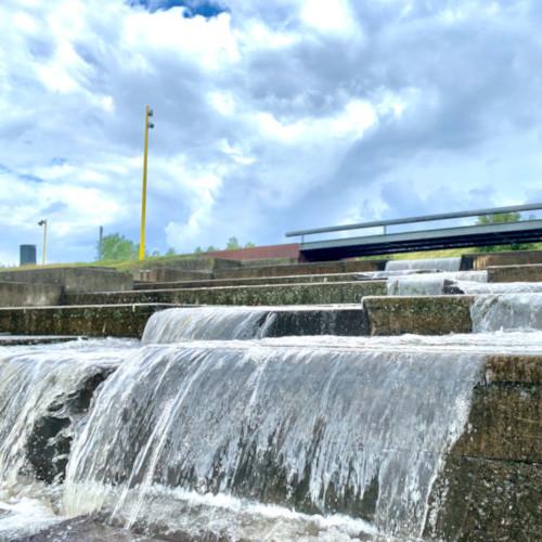 Bydelsforeningen regnvand